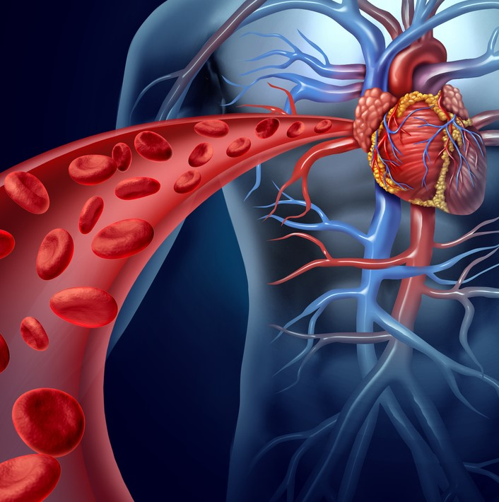 Therapy Selection in HIV-infected Patients with CVD Risks