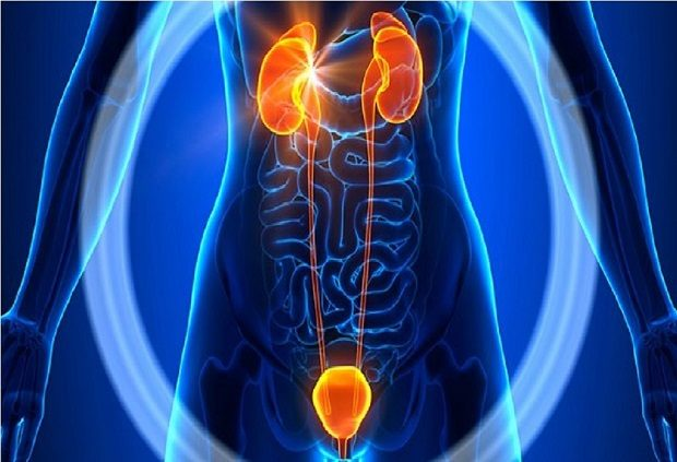 Acupuncture-reasearch-urogenital-disorders-1024x700